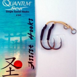 Quantum Single Assist Hooks