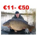 €11 to €50 Coarse