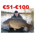 €51 to €100 Coarse