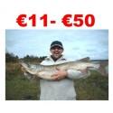 € 11 to €50 Pike