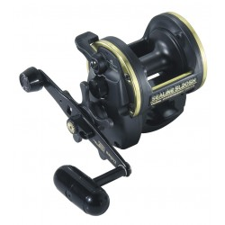 Daiwa Sealine SL30 SH BoatBeach Multiplier