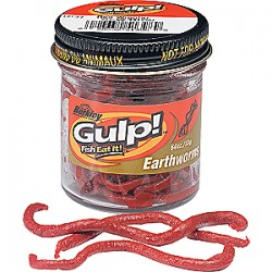 Berkley Powerbait Gulp Earthworm 4in Red Wiggler