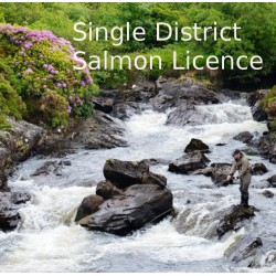 IFI Irish Salmon B Licence Single District 2021 Season