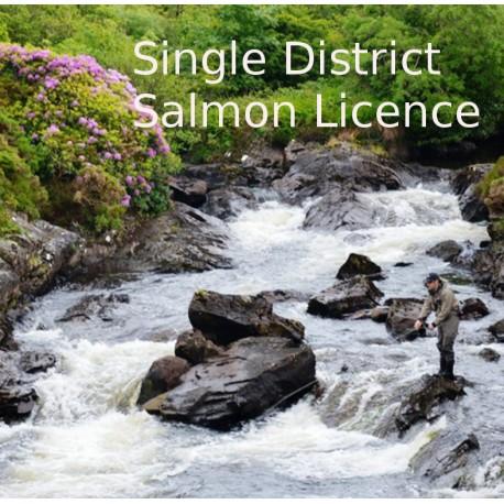 IFI Irish Salmon B Licence Single District 2021 Season henrys