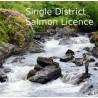 IFI Irish Salmon B Licence Single District 2021 Season Henrys Tackle