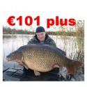 €101+ Coarse