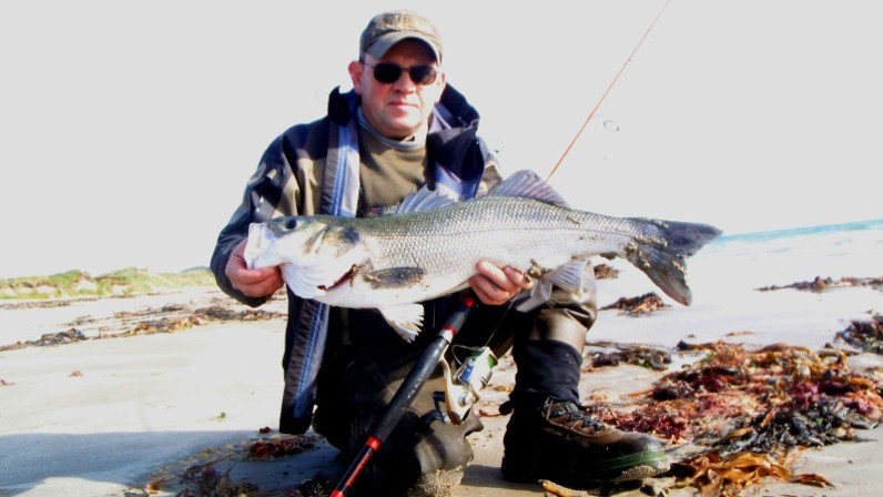 Bass on Lures